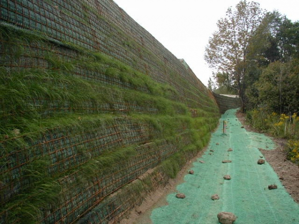 Chaffee Mse Wall Retaining Wall Design Specialties